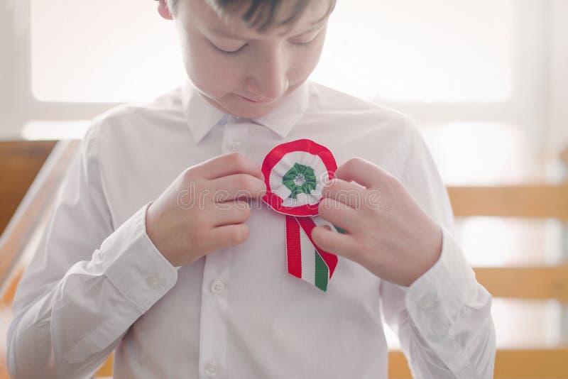 Λίγη ουγγρική κονκάρδα καρφιτσών αγοριών πατριωτών στοκ εικόνα με δικαίωμα ελεύθερης χρήσης