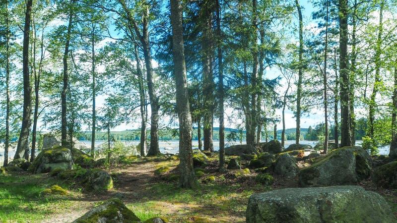 Λίγη πορεία δίπλα στους μεγάλους βράχους και μια άποψη λιμνών στοκ εικόνες
