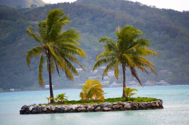 Λίγη όαση νησιών σε Bora Bora στοκ φωτογραφία με δικαίωμα ελεύθερης χρήσης