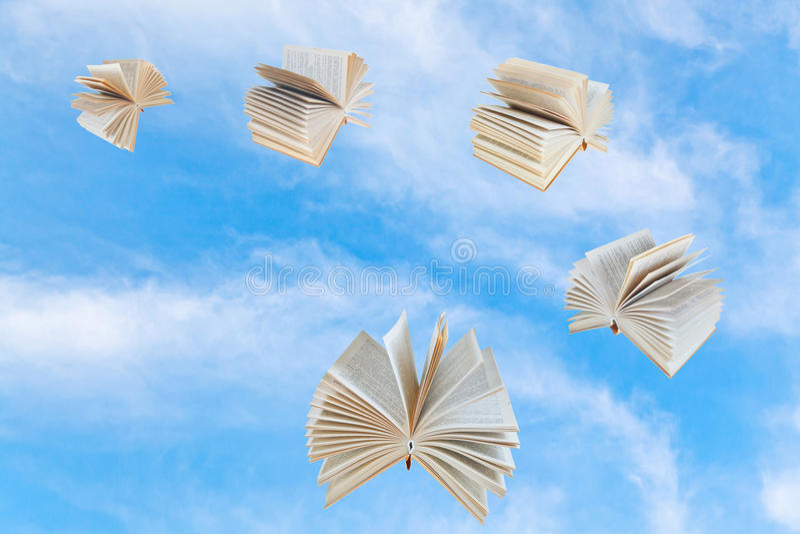 Λίγοι κρατούν τη μύγα στο μπλε ουρανό στοκ εικόνα με δικαίωμα ελεύθερης χρήσης