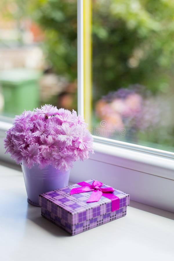 Λίγος πορφυρός κάδος με την τρυφερή ανθοδέσμη του όμορφου ρόδινου γαρίφαλου με το ιώδες κιβώτιο δώρων κοντά στο παράθυρο στο φως  στοκ εικόνα με δικαίωμα ελεύθερης χρήσης