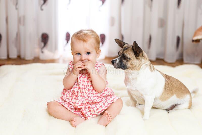 Λίγο αστείο καυκάσιο κορίτσι το παιδί κάθεται στο σπίτι στο πάτωμα σε έναν ελαφρύ τάπητα με το καλύτερο φίλο του σκυλιού μισό-φυλ στοκ εικόνες