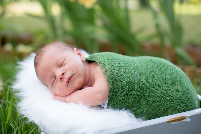 Λίγο γλυκό νεογέννητο αγοράκι, που κοιμάται στο κλουβί με το περικάλυμμα και το χ στοκ φωτογραφίες με δικαίωμα ελεύθερης χρήσης