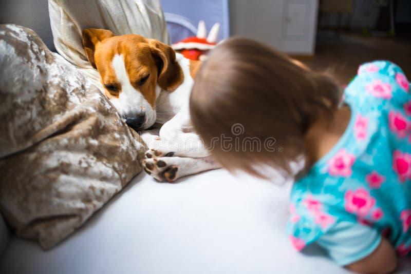 Λίγο κοριτσάκι με το σκυλί λαγωνικών που βρίσκεται στον καναπέ στοκ φωτογραφίες με δικαίωμα ελεύθερης χρήσης