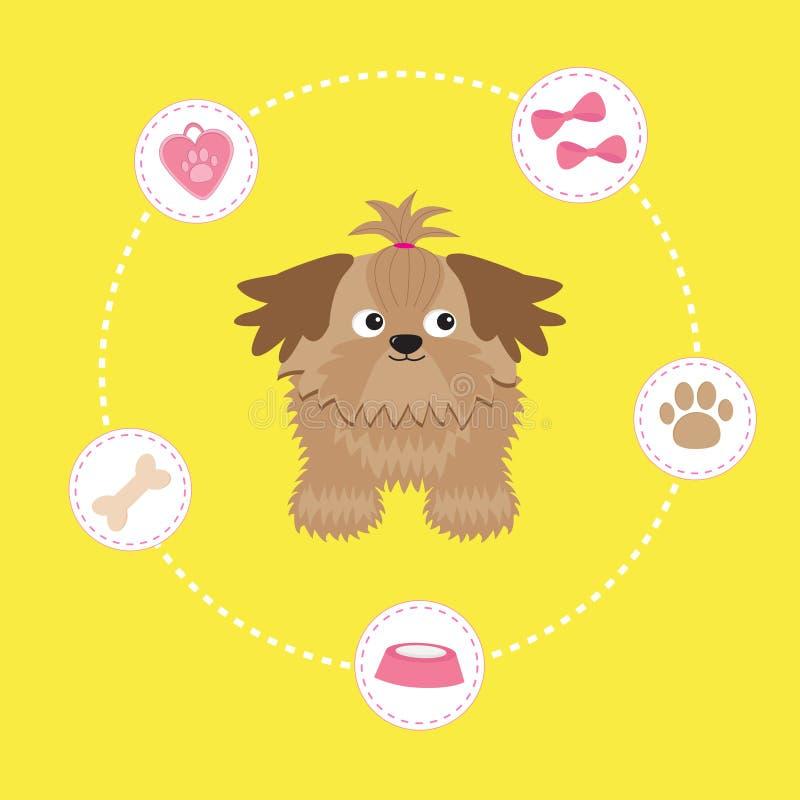 Λίγο μαύρισμα Shih Tzu γοητείας και ουσία σκυλιών εξόρμηση διανυσματική απεικόνιση