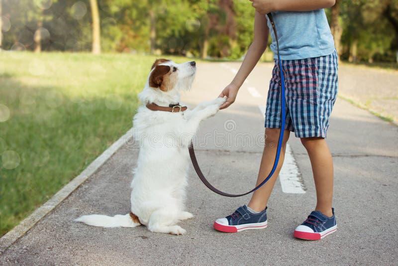 Λίγο παιδί που παίζει με το σκυλί του που δίνει υψηλά πέντε υπακοή και απεριόριστη έννοια αγάπης στοκ εικόνα