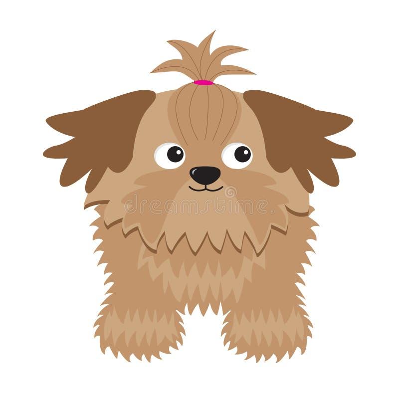 Λίγο σκυλί Shih Tzu μαυρίσματος γοητείας απομονωμένος διανυσματική απεικόνιση