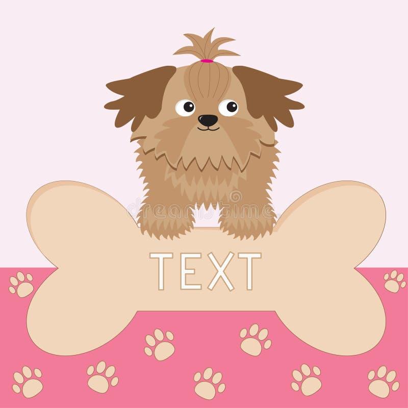 Λίγο σκυλί Shih Tzu μαυρίσματος γοητείας και μεγάλο κόκκαλο πόδι ελεύθερη απεικόνιση δικαιώματος
