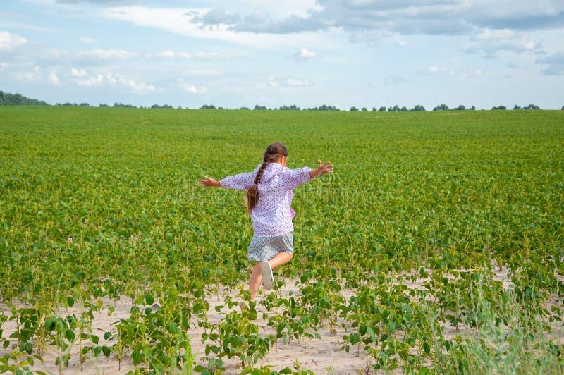 Λίγο χαριτωμένο κορίτσι που τρέχει πέρα από τον τομέα σόγιας, καλοκαίρι στοκ φωτογραφίες