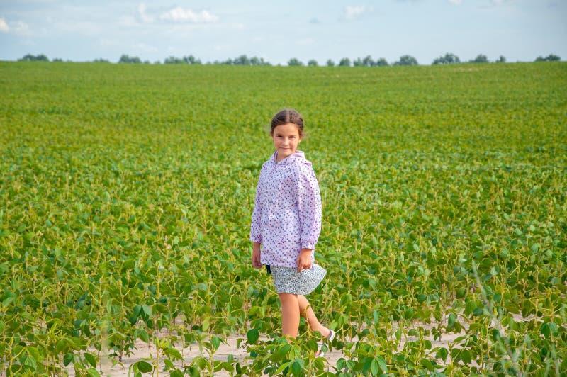 Λίγο χαριτωμένο κορίτσι που τρέχει πέρα από τον τομέα σόγιας, καλοκαίρι στοκ εικόνες