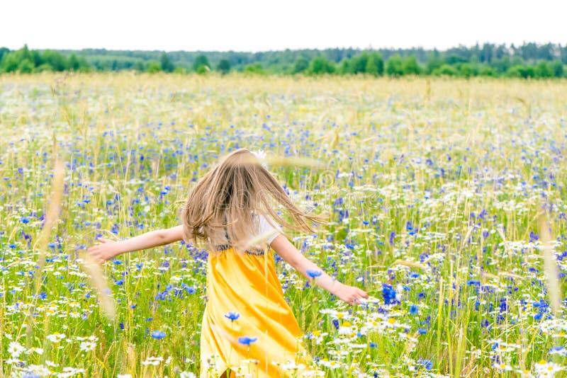 Λίγο όμορφο κορίτσι στην κίτρινη ρωσική επιλογή φορεμάτων ανθίζει στον τομέα των άγριων λουλουδιών τη θερινή ημέρα στοκ φωτογραφίες με δικαίωμα ελεύθερης χρήσης