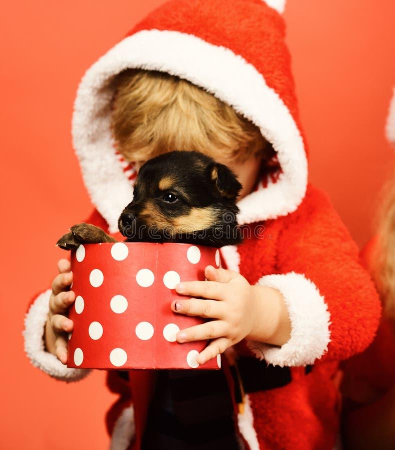 Λίγο Santa κρατά λίγο σκυλί στο επισημασμένο κιβώτιο στοκ φωτογραφίες