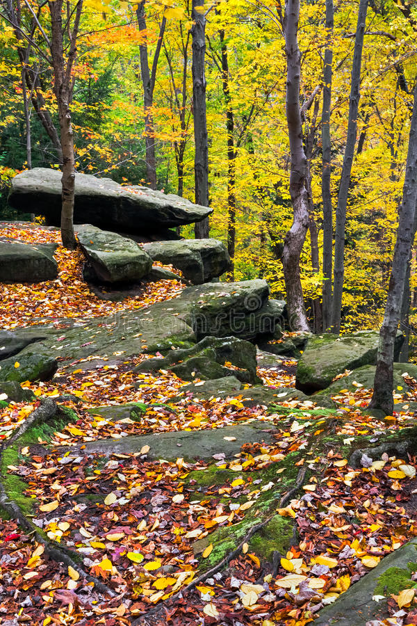 Λίθοι φθινοπώρου στοκ φωτογραφία με δικαίωμα ελεύθερης χρήσης