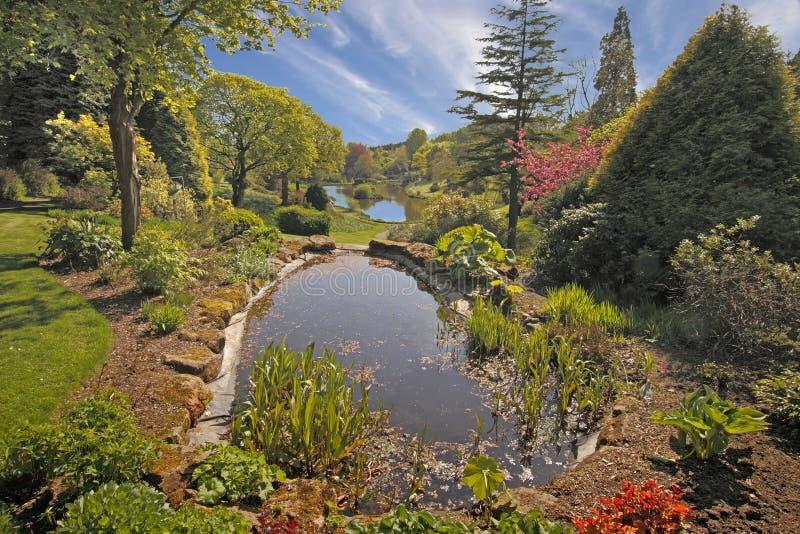 Λίμνες κήπων στοκ φωτογραφία με δικαίωμα ελεύθερης χρήσης