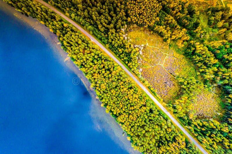 Λίμνες κατά τη δασική, τοπ άποψη στοκ φωτογραφίες με δικαίωμα ελεύθερης χρήσης