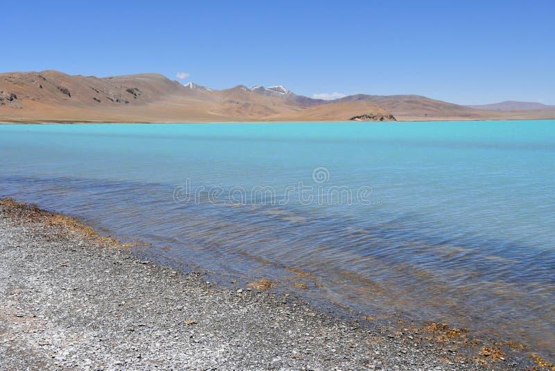 Λίμνες του Θιβέτ Λίμνη του κοβαλτίου του Sam το καλοκαίρι στο σαφή καιρό στοκ εικόνα με δικαίωμα ελεύθερης χρήσης