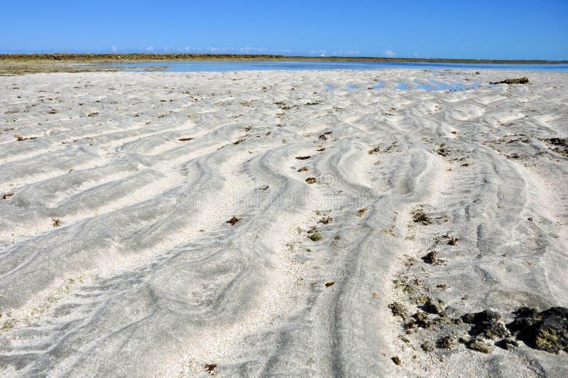Λίμνες του maragogi στοκ εικόνες