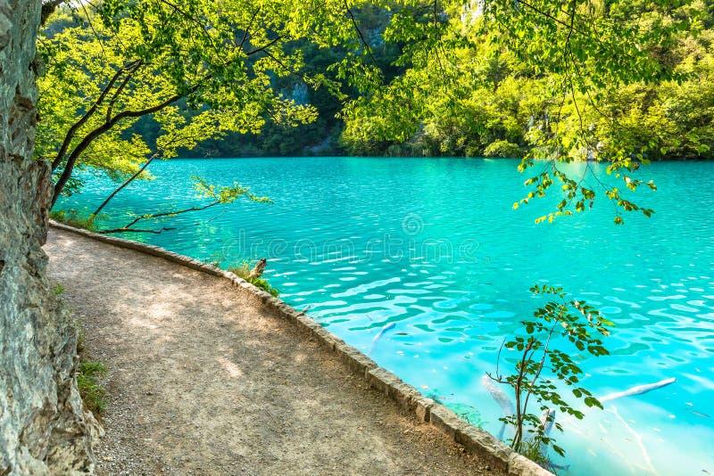 Λίμνες Plitvice, καταρράκτης της Κροατίας Καταπληκτική θέση στοκ φωτογραφία με δικαίωμα ελεύθερης χρήσης