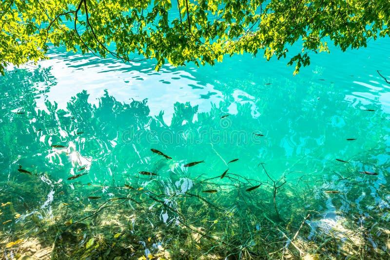 Λίμνες Plitvice, καταρράκτης της Κροατίας Καταπληκτική θέση στοκ εικόνα με δικαίωμα ελεύθερης χρήσης