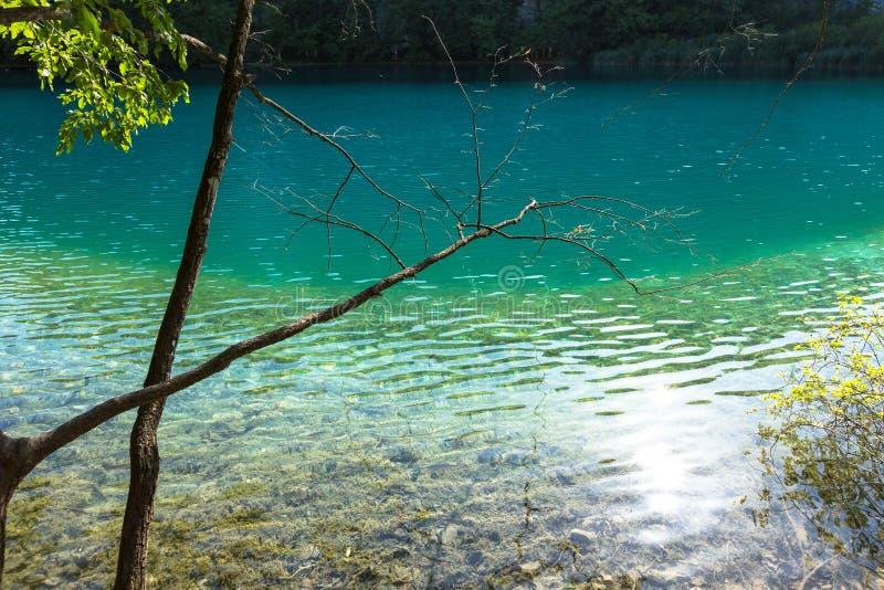 Λίμνες Plitvice, καταρράκτης της Κροατίας Καταπληκτική θέση στοκ φωτογραφίες με δικαίωμα ελεύθερης χρήσης