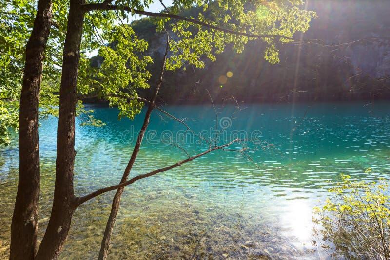 Λίμνες Plitvice, καταρράκτης της Κροατίας Καταπληκτική θέση στοκ εικόνες