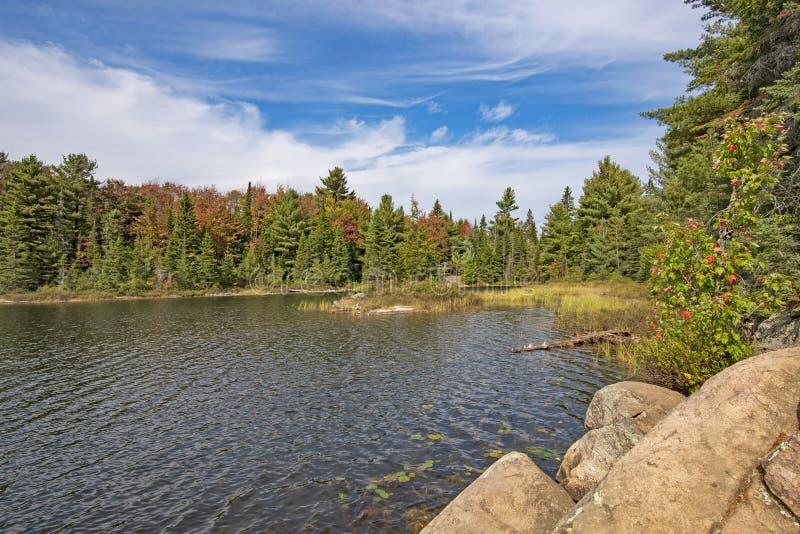 Λίμνη αγριοτήτων ως έναρξη χρωμάτων πτώσης που κινείται μέσα στοκ φωτογραφίες