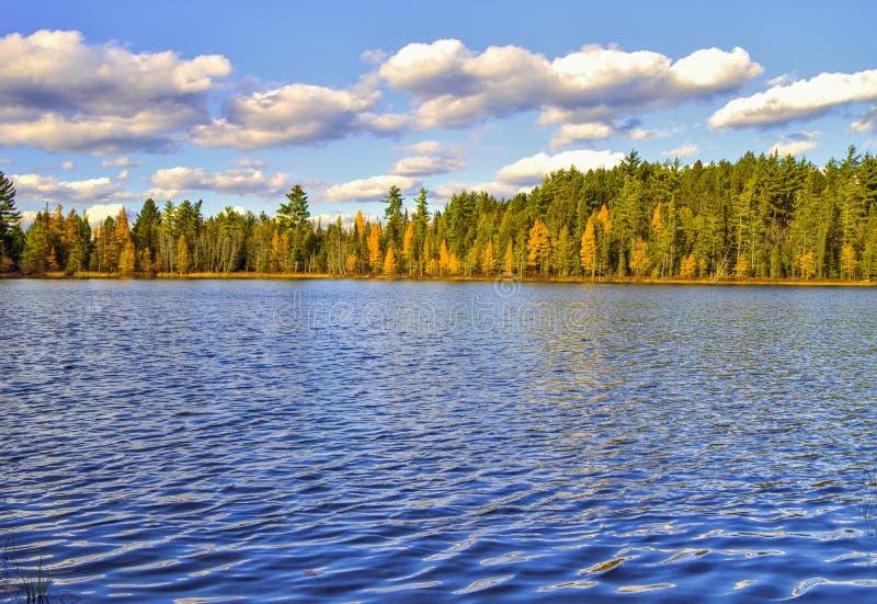 Λίμνη αγριοτήτων στοκ φωτογραφίες με δικαίωμα ελεύθερης χρήσης
