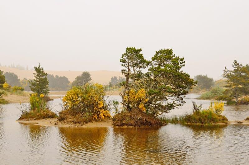 Λίμνη αμμόλοφων στοκ φωτογραφίες