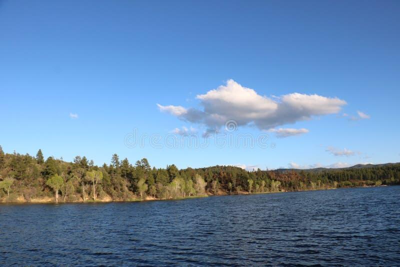 Λίμνη βουνών που περιβάλλεται από τα δέντρα πεύκων στοκ φωτογραφίες με δικαίωμα ελεύθερης χρήσης
