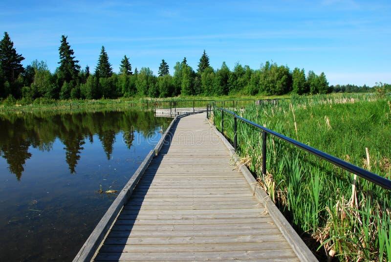λίμνη γεφυρών στοκ φωτογραφία με δικαίωμα ελεύθερης χρήσης