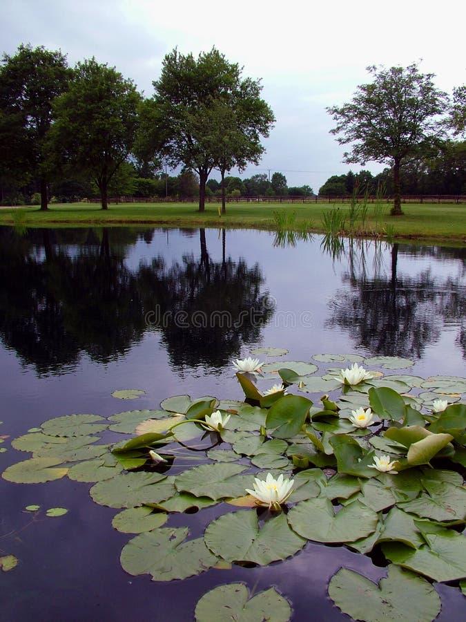 Download λίμνη γκολφ σειράς μαθημάτ στοκ εικόνες. εικόνα από ανταγωνισμός - 1533196