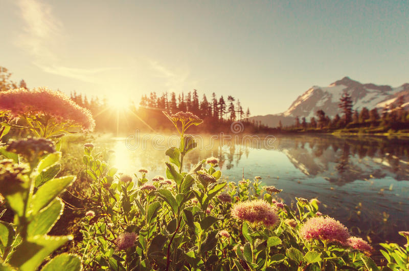 Λίμνη εικόνων στοκ εικόνες
