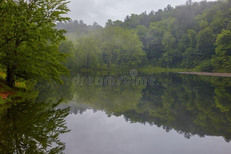 Λίμνη ενυδρίδων, μπλε χώρος στάθμευσης κορυφογραμμών, Βιρτζίνια στοκ εικόνα