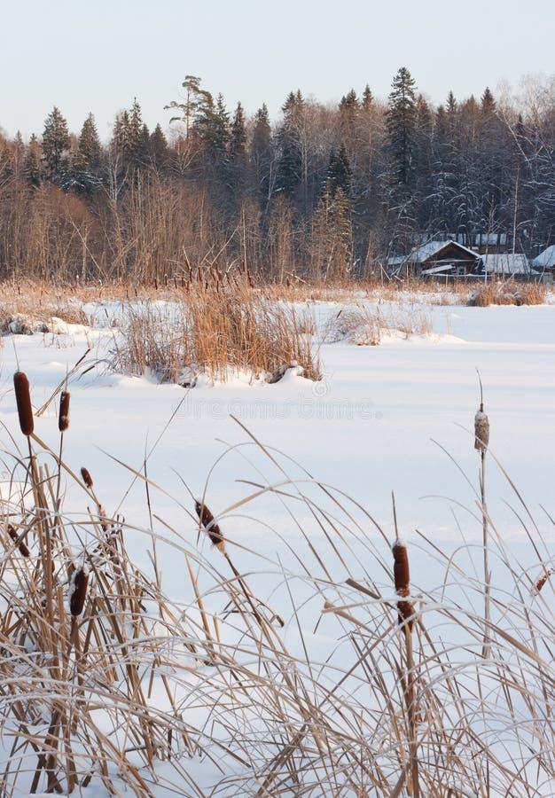 λίμνη εξοχικών σπιτιών τραπ&epsil στοκ εικόνες με δικαίωμα ελεύθερης χρήσης