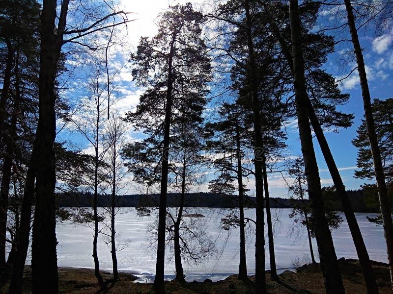 Λίμνη Ευρώπη Σκανδιναβίας Σουηδία φύσης στοκ εικόνες