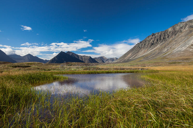 Λίμνη ηρεμίας tundra στην Αλάσκα στοκ φωτογραφία