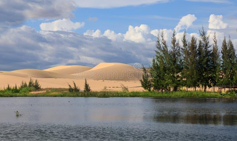 Λίμνη και άσπροι αμμόλοφοι στοκ φωτογραφία με δικαίωμα ελεύθερης χρήσης