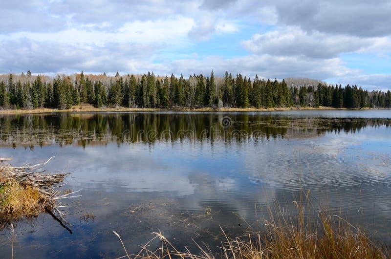 Λίμνη και ακτή Hickey το φθινόπωρο στο επαρχιακό πάρκο βουνών παπιών, Manitoba στοκ φωτογραφίες