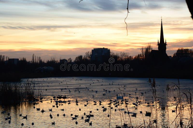 Λίμνη και ηλιοβασίλεμα στοκ φωτογραφίες με δικαίωμα ελεύθερης χρήσης