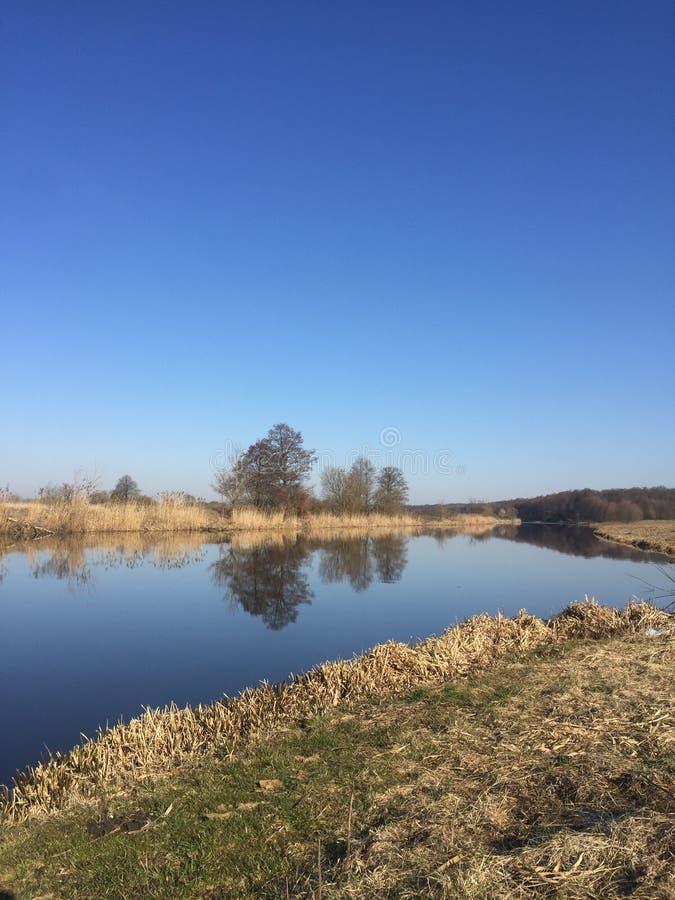 λίμνη και σανός στοκ φωτογραφία με δικαίωμα ελεύθερης χρήσης