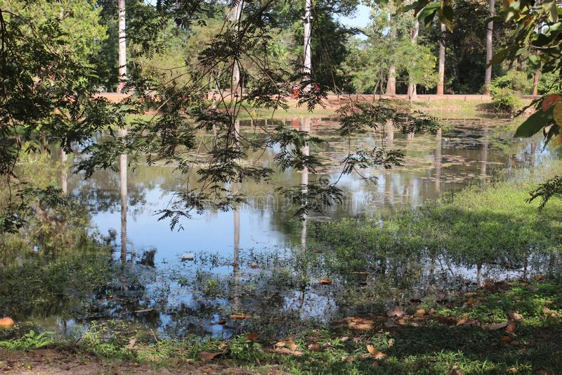 Λίμνη κοντά στο ναό στη μέση της ζούγκλας, Καμπότζη στοκ φωτογραφίες με δικαίωμα ελεύθερης χρήσης