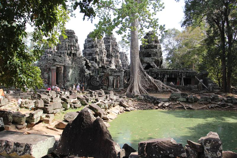 Λίμνη κοντά στο ναό στη μέση της ζούγκλας, Καμπότζη στοκ εικόνα