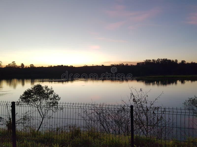 Λίμνη με τη βλάστηση στοκ φωτογραφίες με δικαίωμα ελεύθερης χρήσης