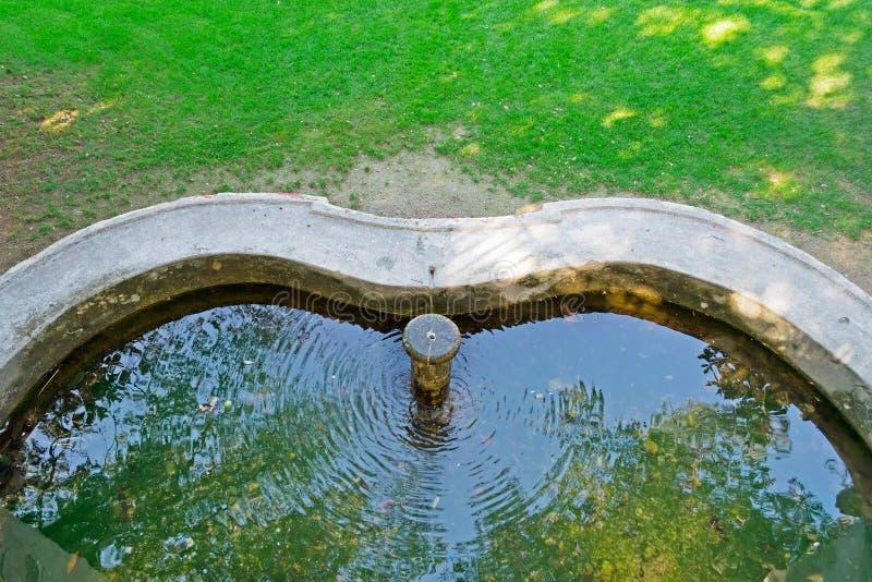 Λίμνη πηγών στοκ φωτογραφία με δικαίωμα ελεύθερης χρήσης