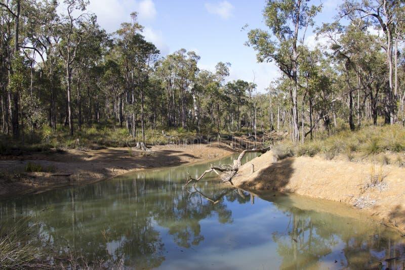 Λίμνη ποταμών στη στριμμένη δυτική Αυστραλία ρυακιών το χειμώνα στοκ φωτογραφία με δικαίωμα ελεύθερης χρήσης