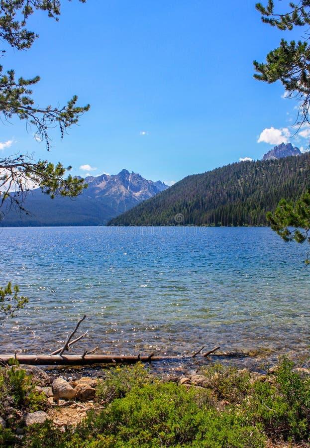 Λίμνη σολομών στοκ φωτογραφία με δικαίωμα ελεύθερης χρήσης