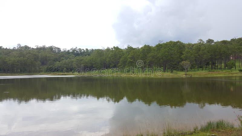 Λίμνη στη μέση του βουνού στοκ φωτογραφίες με δικαίωμα ελεύθερης χρήσης