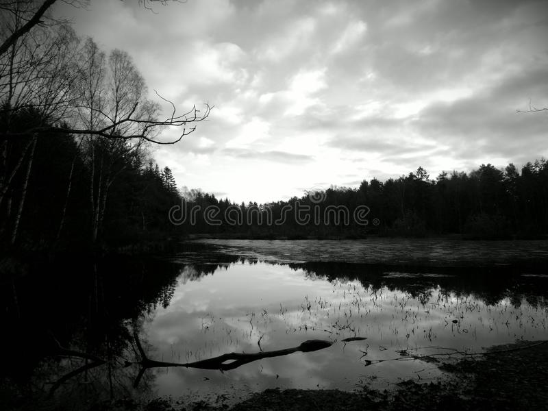 Λίμνη στο βοτανικό κήπο του Γκέτεμπουργκ στοκ εικόνα