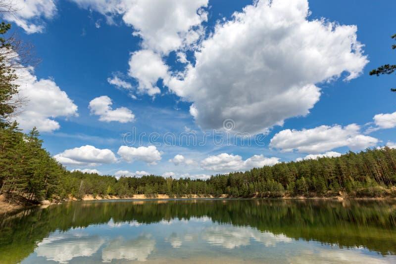 Λίμνη στο δάσος πεύκων στη συμπαθητική ημέρα στοκ εικόνες