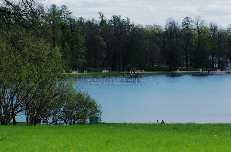 Λίμνη στο πάρκο στοκ εικόνες
